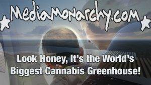 Look Honey, It's the World's Biggest Cannabis Greenhouse!