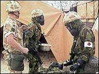 gulf war illness 'chemical link'