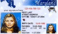 maryland loses track of state id cards