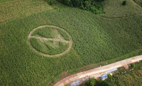 monsanto's harvest of fear