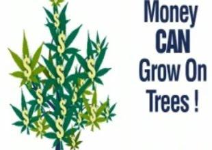 cbs bans marijuana legalization ad in times square