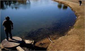 Supreme Court Rulings Open Loopholes for Water Polluters