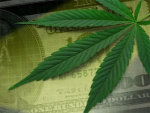 Colorado pot advocates plan legalization push for 2012