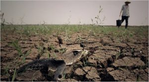 Central China Hit By Drought, As Reservoirs Become 'Dead Water'