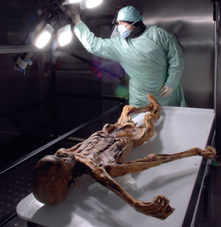 Ötzi's Blood Detected