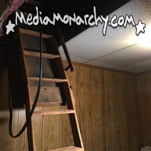 #MorningMonarchy: November 1, 2018