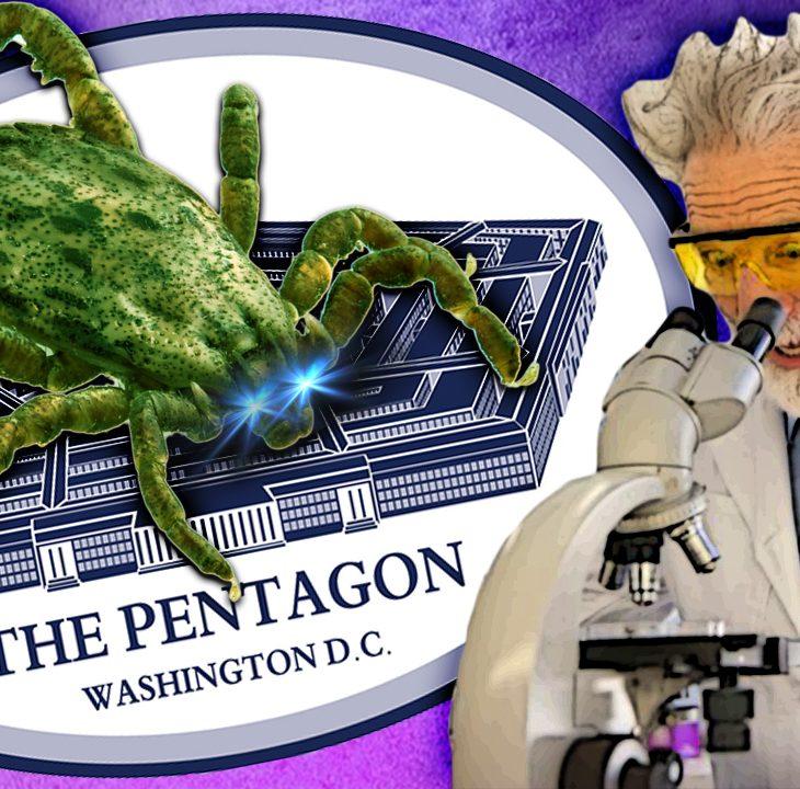 #NewWorldNextWeek: House to Pentagon: Did You Weaponize Ticks? (Video)