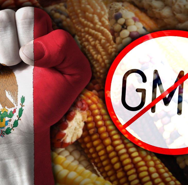 #NewWorldNextWeek: Mexico Says No to GMOs (Video)